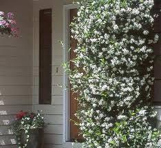 24 best willi sherman memorial garden images on pinterest garden