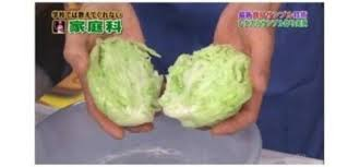 cabbage china is this china made cabbage stuff time for