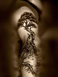 tree designs arm tree tattoos for ideas and designs