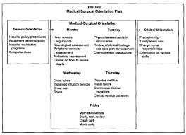blueprint for proficient practice an medical surgical