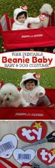 best 20 baby halloween ideas on pinterest funny baby halloween