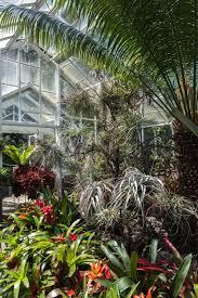 Botanical Gardens Volunteer by Volunteer Park Conservatory Seattle Wa U2014 Homestead Brooklyn