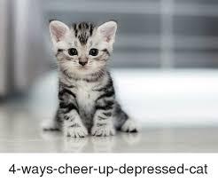 Depressed Cat Meme - 25 best memes about depressed cat depressed cat memes