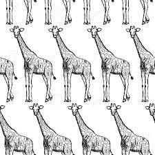 sketch giraffe vector vintage seamless pattern eps 10 royalty