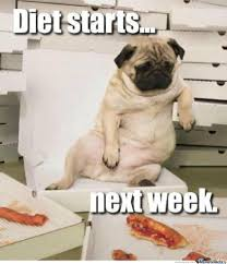 Chubby Meme - chubby doggy by redz18 meme center