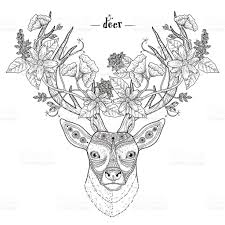 elegant deer head stock vector art 494467378 istock