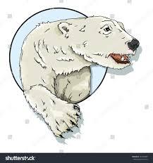 vector drawing polar bearpolar bear easy stock vector 141999295