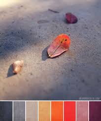 9 best red orange purple color scheme images on pinterest