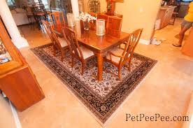 Laminate Flooring West Palm Beach Organic Cleaning Wool Carpet West Palm Beach By Petpeepee Company
