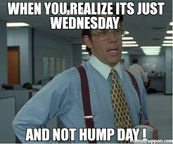 Hump Day Meme - when you realize its just wednesday and not hump day meme thatd