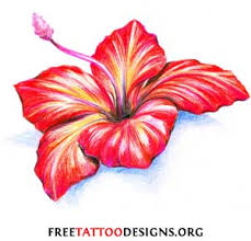 Flower Colour Symbolism - flower tattoos floral lily lotus tropical sunflower tattoo
