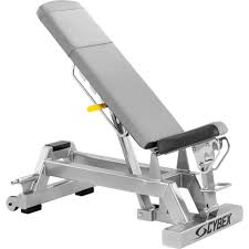 cybex big iron adjustable dumbbell bench non locking origin