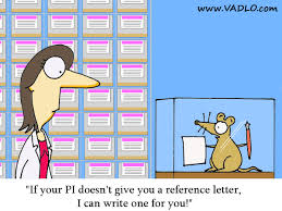 recommendation letter cartoons transgenic mouse offering