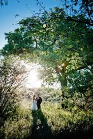 self wedding planner 109 best safari wedding images on safari wedding