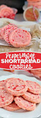 the most pinned peppermint recipes for christmas shortbread