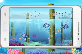 big fish eat small fish android apps on google play