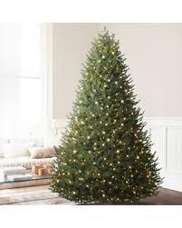 amazing deal on 5 5 balsam hill balsam fir artificial