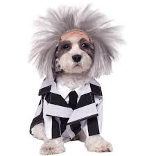 dog costumes u0026 halloween accessories for your pets