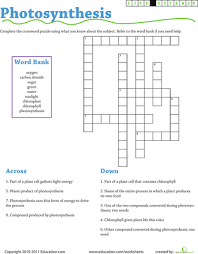 life science crossword photosynthesis photosynthesis life