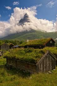 these beautiful green roofed scandinavian homes look like