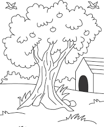 apple tree coloring page free coloring pages apple tree coloring pages coloring home