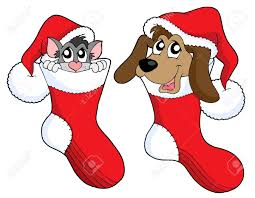 cute cat and dog in christmas socks vector illustration royalty