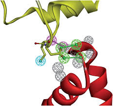 rational design of protein u2013protein interaction inhibitors