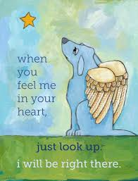 sympathy for loss of dog sympathy quote for loss of dog quote number 561461 picture quotes