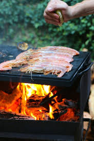 best 25 outdoor stove ideas on pinterest gas grills for sale