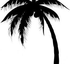 palm tree image design free image designs