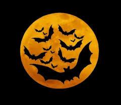 www halloween black widow halloween shot recipe simple halloween