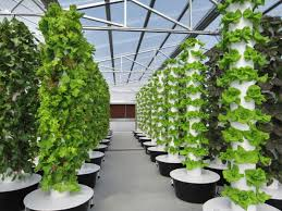 Vertical Aeroponic Garden Tower Garden Farm Uses An Advanced Form Of Vertical Hydroponics