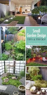 Small Backyard Trees by Best 25 Small Garden Trees Ideas On Pinterest London Garden