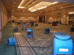 How To Dry Flooded Basement by Wet Basement Carpet Clean Dry Out Removal Frederick Reistertown