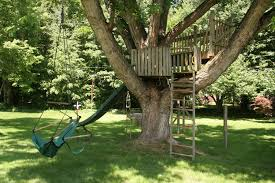 outdoor swings and a wooden staircase in a big tree with a slide