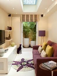 narrow living room design narrow tv room ideas pictures remodel