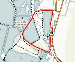 map of allen allen marsh and butcher slough log pond loop california maps