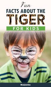 10 cute tiger pictures and tiger facts fun kids the uk s children