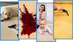 Upholstery Hendersonville Nc Carpet Cleaning Hendersonville Nc 828 894 2447 828 692 1566