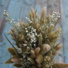 baby s breath rustic baby s breath posy the artisan dried flower company