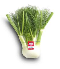 Green Root Vegetable - fennel u0026 sweet anise fresh bulbs u0026 root how to cook