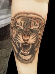 tiger faces tattoos design idea for and