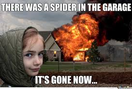 Kill Spider Meme - image result for there was a spider it s gone now meme fire