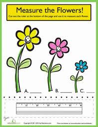 ruler measurements measure the flowers worksheet education com
