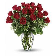dozen roses one dozen roses garden arts flowers