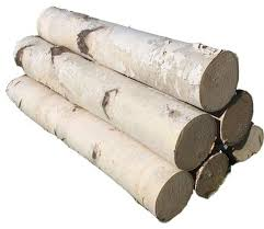 6 piece log birch set white rustic home decor by northern