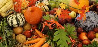 la cuisine du marché cavaillon menu du marché la cuisine du marché à cavaillon en provence