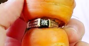 carrot ring woman s lost engagement ring found rooted to a carrot 13 years