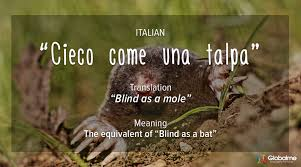 Moles Blind Idioms Aka Speakwords Around The World Italian Idioms Globalme