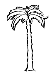 tree printable coloring page corresponsables co